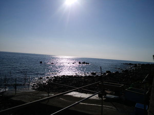 江之浦の風景
