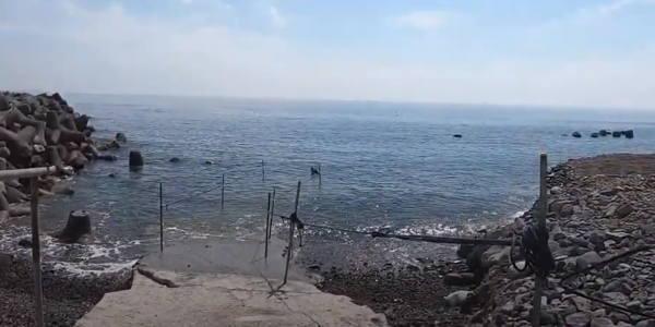 ダイビング 江之浦