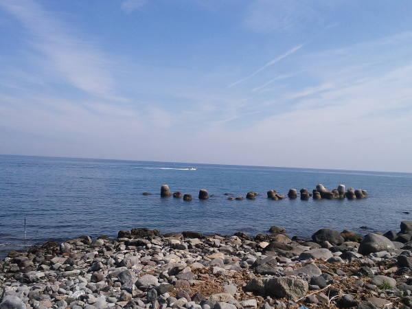 江之浦海岸