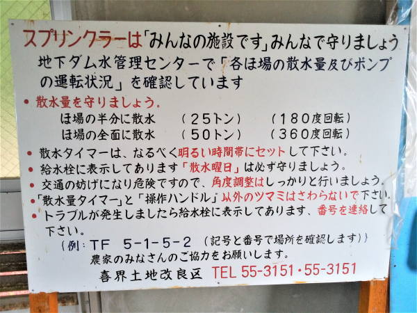 喜界島 スプリンクラーのルール
