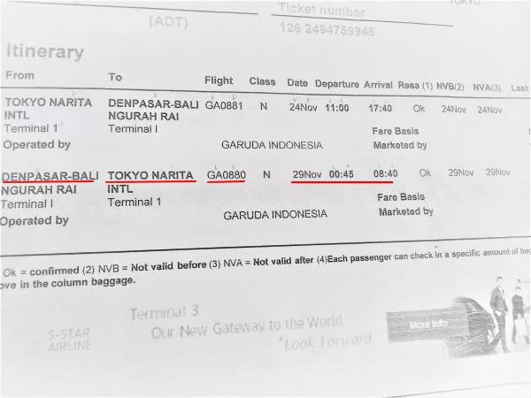 1129幻の航空チケット